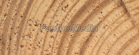 brown, wood, texture, background - 28280443