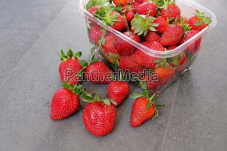 1 kg fresh strawberries in plastic