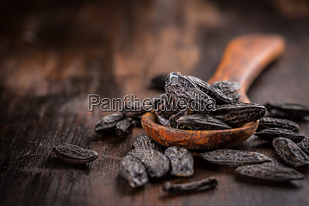 fragrant tonka beans for baking and