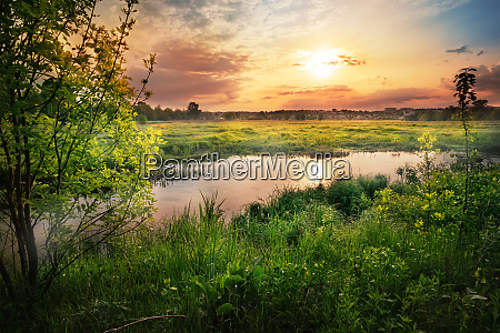 sunset on the river with green
