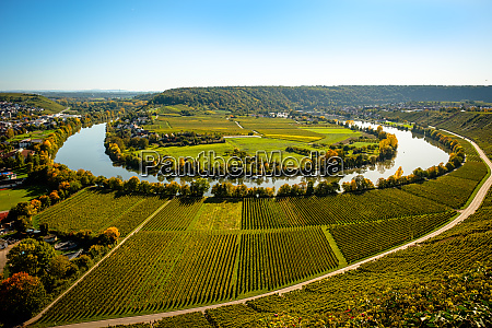 neckar loop river nearby mundelsheim