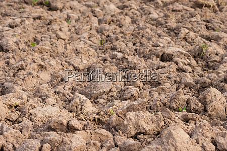 earth soil arable
