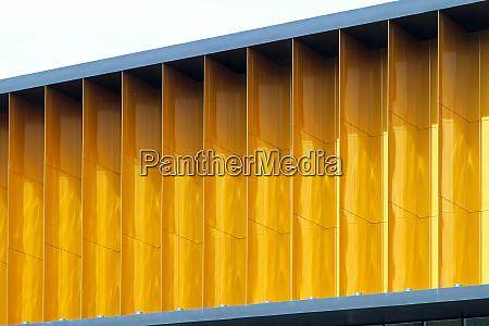 golden windows