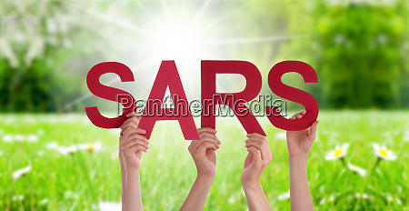 people hands holding word sars grass