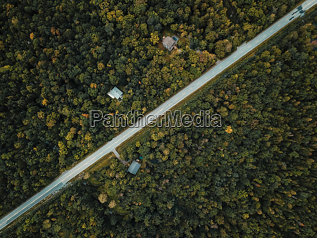 aerial view of trees and diagonal