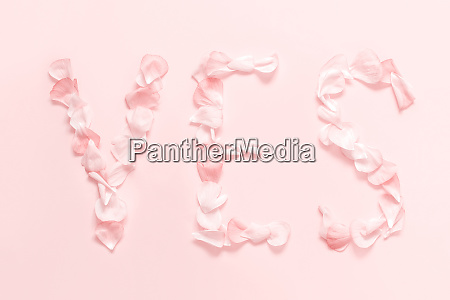 text yes made of pink petals