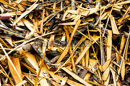 timber recycling