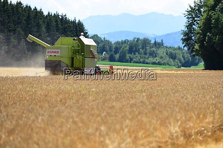 maehdrescher auf einem getreidefeld im salzkammergut