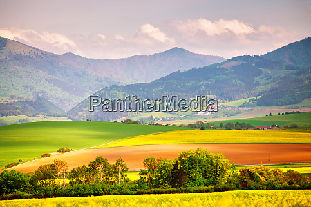 slovakia rural scene blooming spring landscape