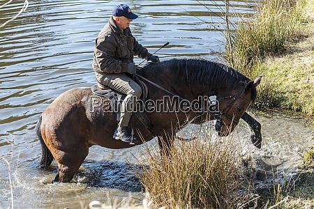 senior horse rider stepping out of