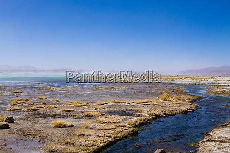 bolivian lagoon landscape bolivia