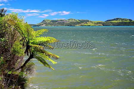 the beautiful whanganui inlet new zealand