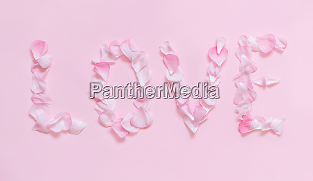text love made of pink petals