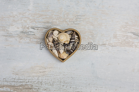 shell heart with copy space on