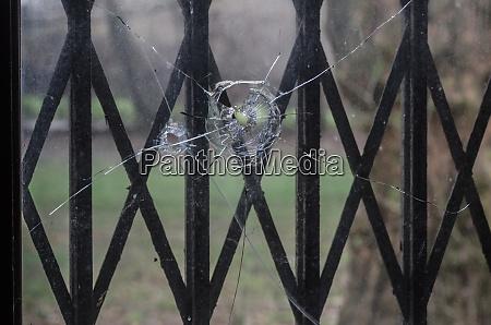 bullet holes in windowpane
