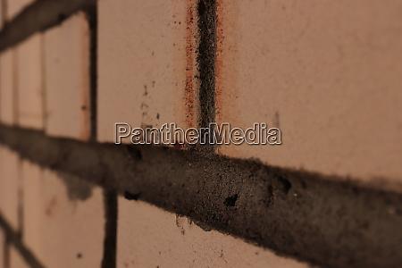 white bricks house wall