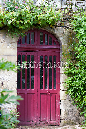 ancient red door with grapevine