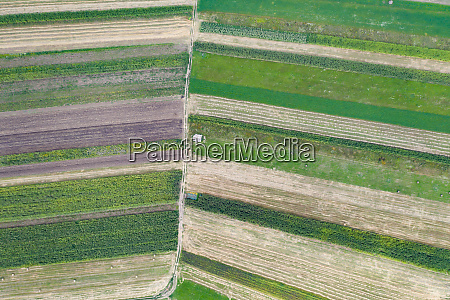 spring fields top view