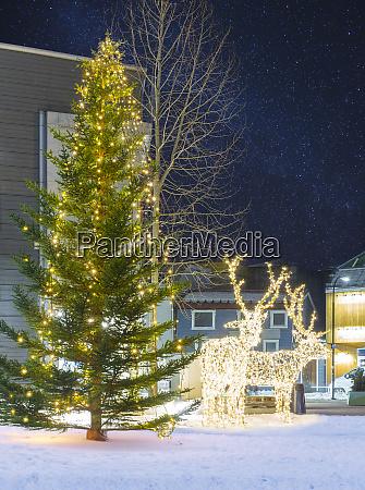 christmas tree and christmas deer decorations