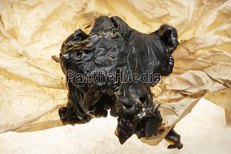 medical marijuana shatter wax processed cannabis