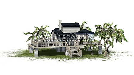deckhouse beautiful house with palm