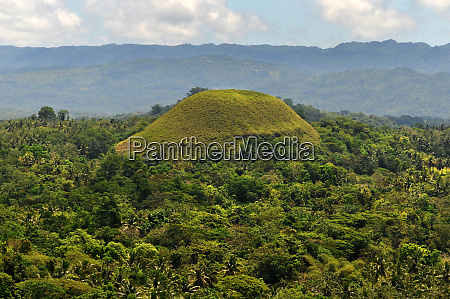 one of the chocolate hills on