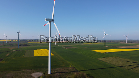 wind turbines farm windmills surrounded by