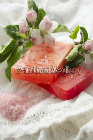 vegan skincare beauty treatment with spa
