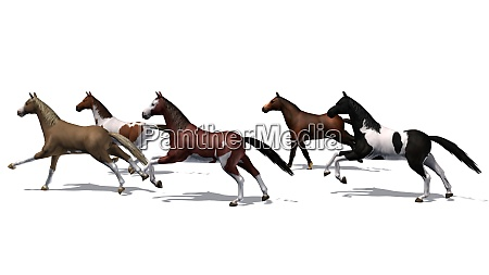 horses running herd with shadow