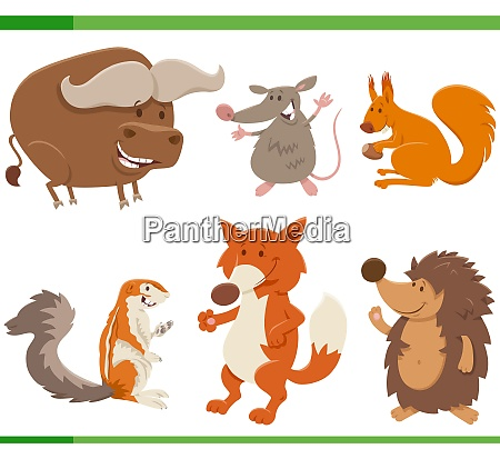 funny cartoon wild animal characters collection