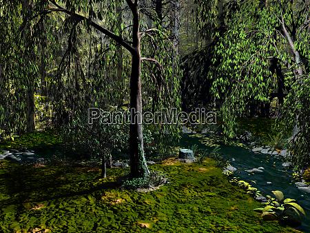 dark dense forest with a stream