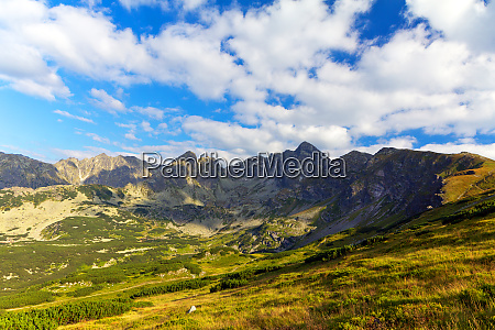 view on tatra mountains in summer