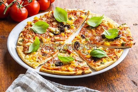 tasty salami pizza