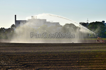 artificial watering of a field due
