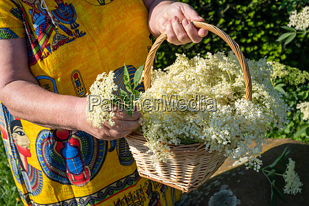 woman holding a basket with freshly