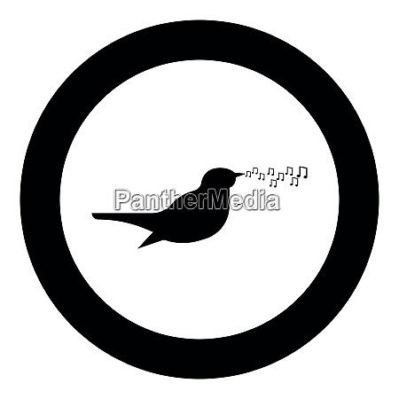 nightingale singing tune song bird musical