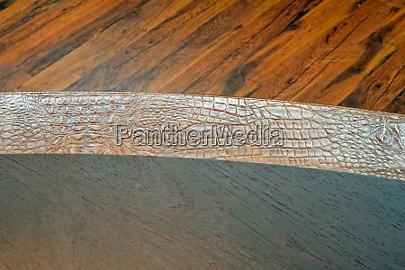 crocodile and wood