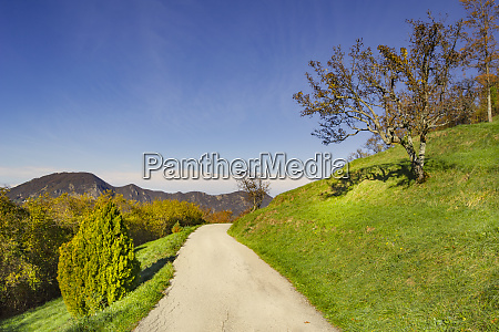 road crosses the green ligurian hills