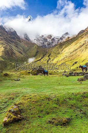 salkantay trekking in peru south america