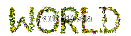flower and blossom letter building word
