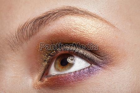 macro image of woman eye
