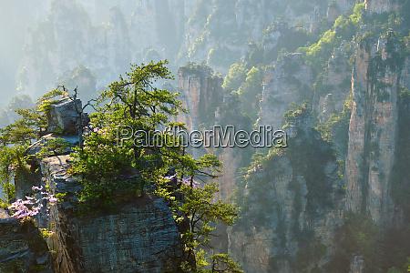 zhangjiajie mountains china