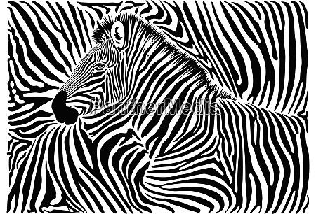 background with a zebra motif