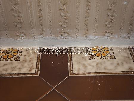 scagliola fine plaster stucco