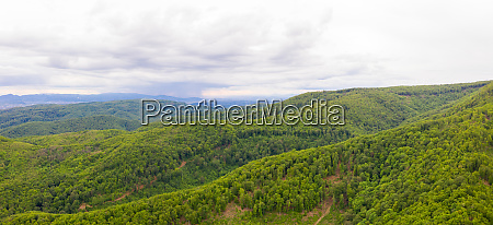 aerial view of national park forest