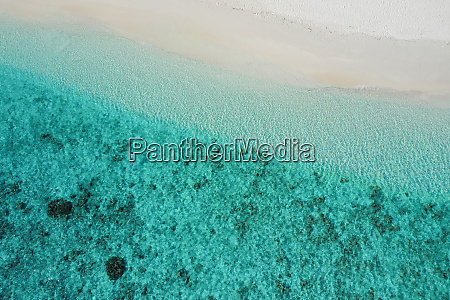 aerial view of the beach shore
