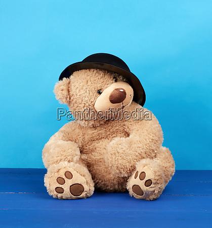 big brown teddy bear in a