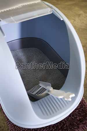 cleaning cat litter box place