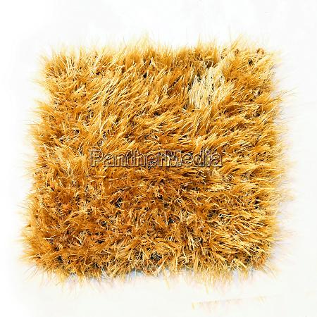carpet 4