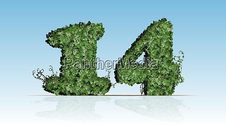 number 14 created of green ivy